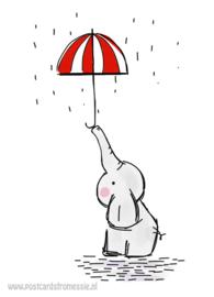 Olifant met paraplu