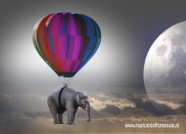 Elephant under a balloon