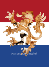 The Netherlands - the Dutch lion