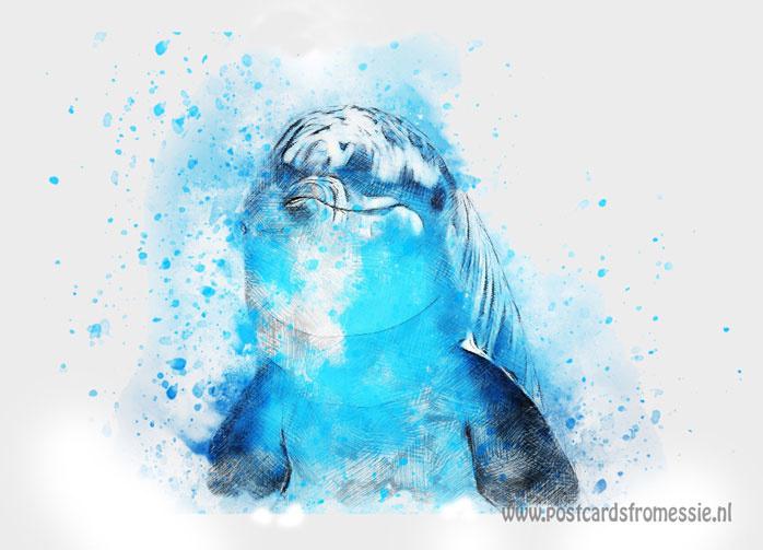 Aquarel ansichtkaart - Dolfijn