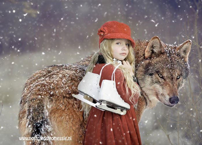 Kind met wolf