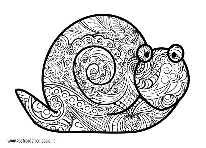 Postcard for coloring - Snail