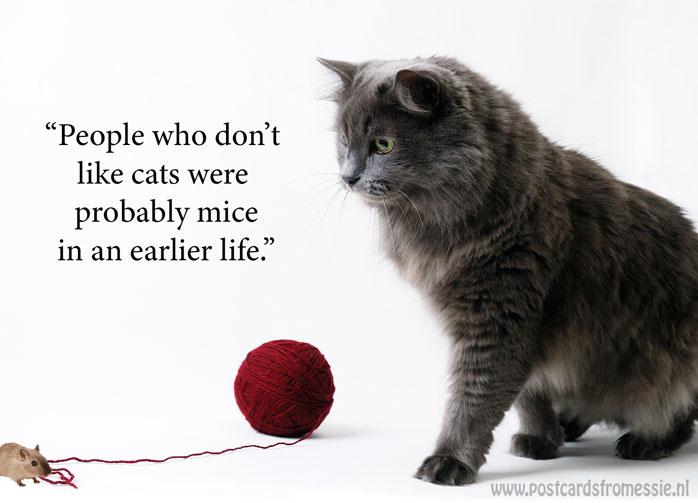 Katten quote 1