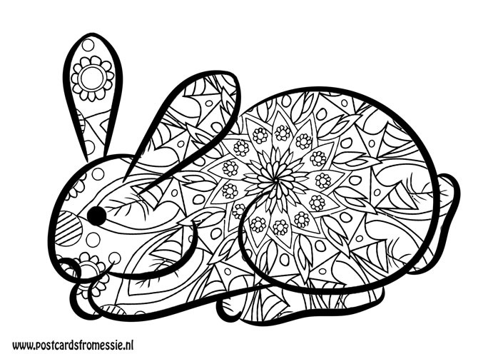 Postcard for coloring - Bunny