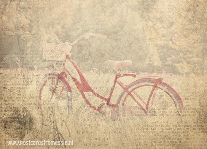 Sepia fiets ansichtkaart