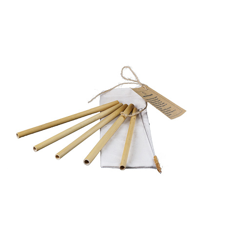 Bamboe rietjes + borstel. Herbruikbaar!