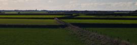Texel Wallen