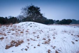 Grafheuvel Kampsheide in de sneeuw