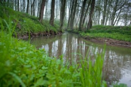 Deurzerdiep meander