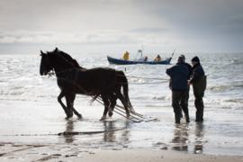 Ameland Paardenreddingsboot 1