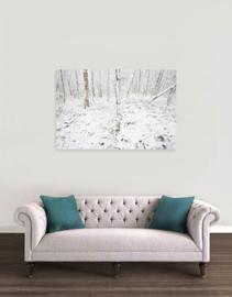Sneeuwbomen Anloerdiepje