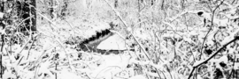 Burgvallen sneeuw