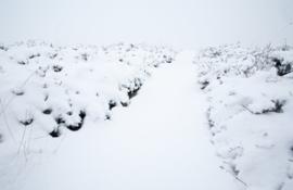 Sneeuwpad Gastersche Duinen