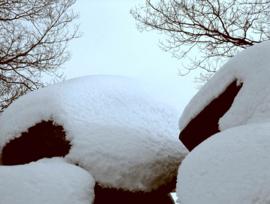Hunebed Balloo sneeuw