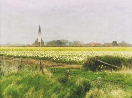 20180413 Den Hoorn, Texel'.