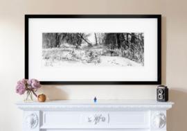 Friessche Veen in de sneeuw