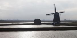 Texel Molen Het Noorden 2