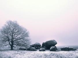 Hunebed Loon mist