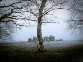 Hunebed Loon mist II