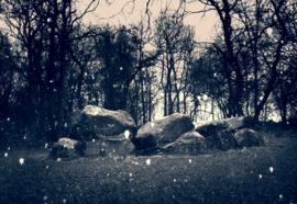 Hunebed Bronneger sneeuw