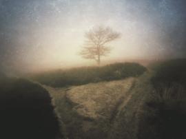 20180324 'Mist'