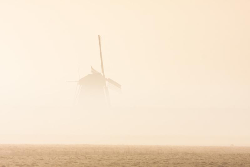 Texel Molen Het Noorden 4