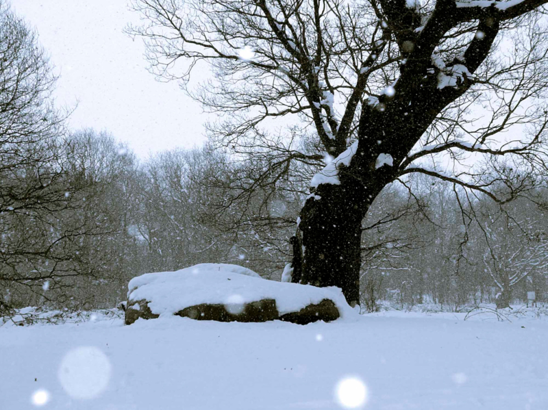 Hunebed Bronneger sneeuw II