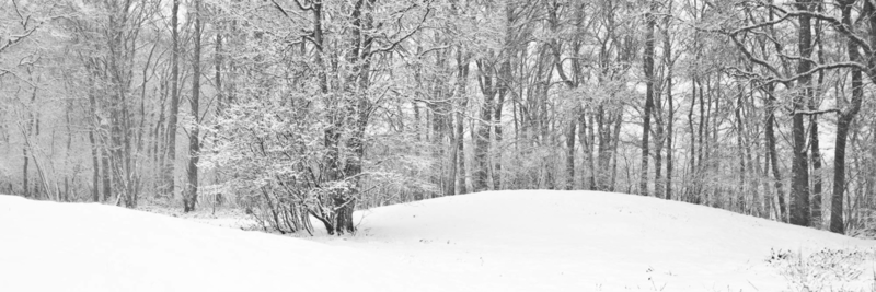 Grafheuvels Oudemolen in de sneeuw