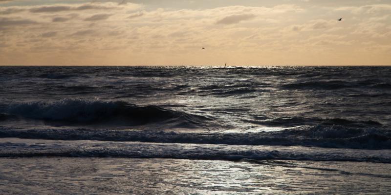Texel Noordzee