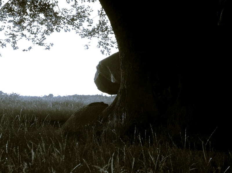 Hunebed Bronneger verstopt