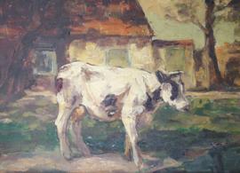 Koe op boerenerf