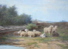 HCC Bogman (1861- 1921) schapen aan het water
