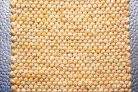 Brinker Carpets - Greenland (160)