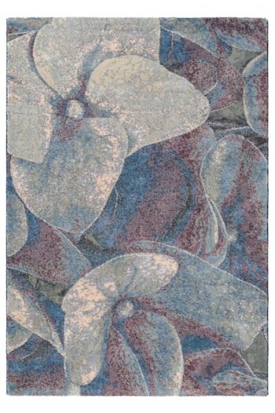 Brink en Campman - Prado hortensia 21608
