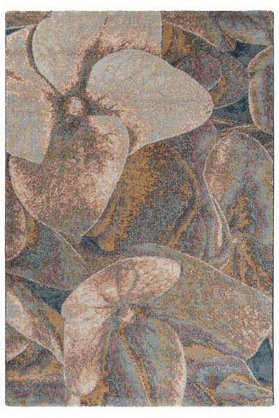 Brink en Campman - Prado hortensia 21603