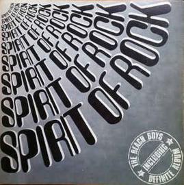 Beach Boys – The Definite Album