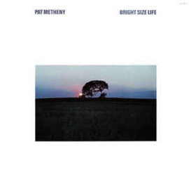 Pat Metheny ‎– Bright Size Life