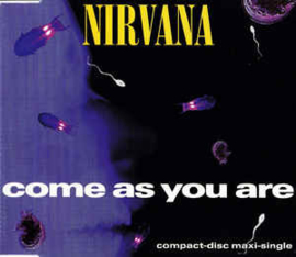 Nirvana – Come As You Are (CD)
