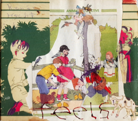 Animal Collective – Feels (CD)