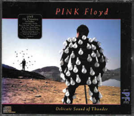 Pink Floyd ‎– Delicate Sound Of Thunder (CD)