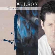 Brian Wilson – Brian Wilson (CD)