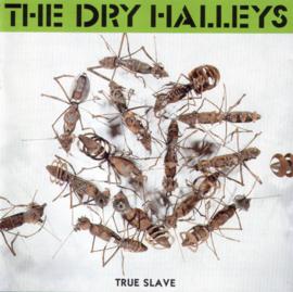 Dry Halleys – True Slave (CD)