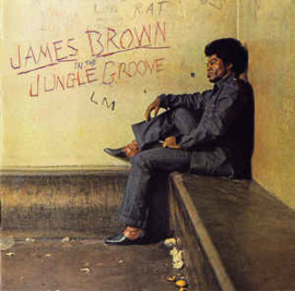 James Brown ‎– In The Jungle Groove (CD)
