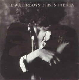 Waterboys ‎– This Is The Sea
