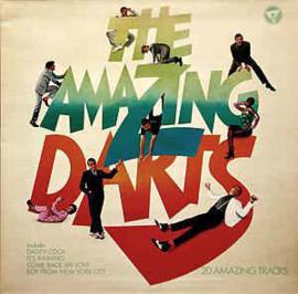 Amazing Darts - Darts