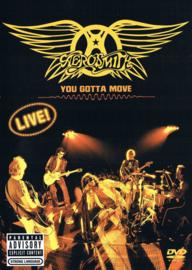 Aerosmith – You Gotta Move (DVD)