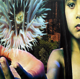 Future Sound Of London – Lifeforms (CD)