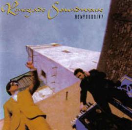 Renegade Soundwave – Howyoudoin? (CD)