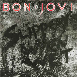 Bon Jovi ‎– Slippery When Wet (CD)