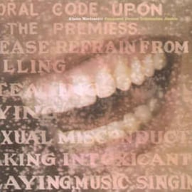 Alanis Morissette ‎– Supposed Former Infatuation Junkie (CD)